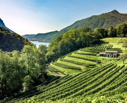 Dolceresio Lugano Lake B&B, Brusino Arsizio - Activities and Surroundings - MendrisiottoTurismo
